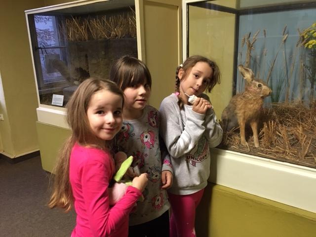 Wunderfinder im Naturkundemuseum