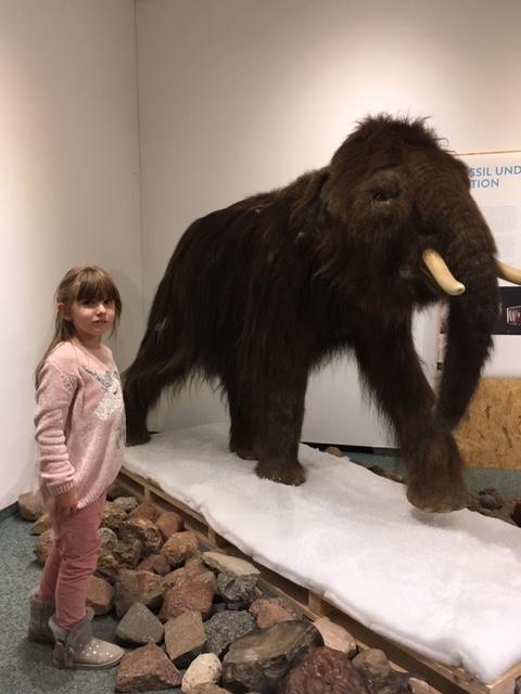 Wunderfinderkind im Naturkundemuseum