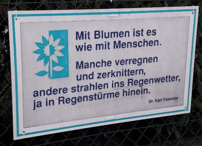 Zuversicht... (Zitat von Dr. Karl Förster)